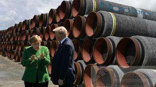 Фото: Трамп и Меркель обсуждают судьбу СП2, pokatim.ru