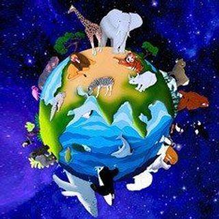 На Земле началось шестое великое вымирание животного мира