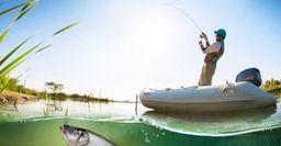 Жерех мечты: на какие приманки клюет хищник, подсказал рыбак