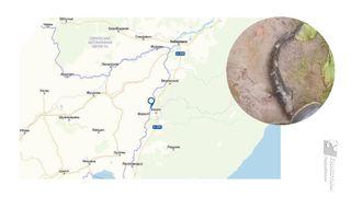 Река Уссури протекает вдвух странах— течение сКитая вРоссию // Коллаж: автор «Покатим.ру» Алиса Никонорова