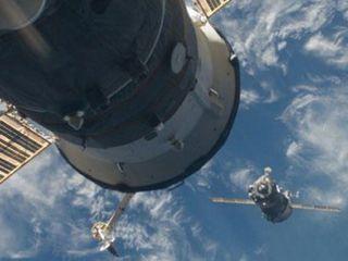 На обшивке МКС обнаружили живые организмы, выжившие в открытом космосе