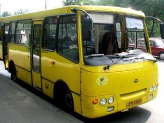 В Ростове столкнулись два пассажирских автобуса