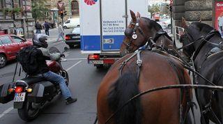 В Забакайле мотоциклист сломал ногу и руку, врезавшись в лошадь