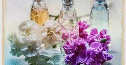 Свежие парфюмы для жаркого лета — Versace подождет до осени