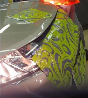 Загадочный автомобиль. Фото: RCI News