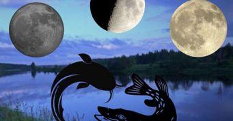 Рыболовный календарь: лучшие дни сентября для рыбалки на щуку, судака, сома