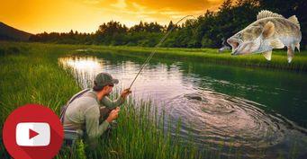 Полезными советами по ловле летнего судака поделился рыбак