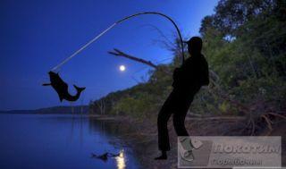 Рыбаки поделились знаниями. Автор изображения: Елена Лановая