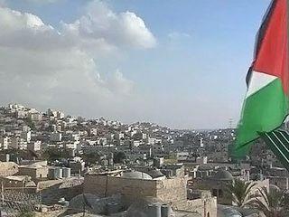 ООН призывает к семидневному перемирию в Газе