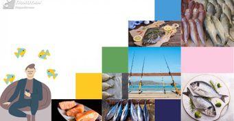 От леща и щуки, до судака и налима: Главная памятка для рыбаков новичков на все времена года