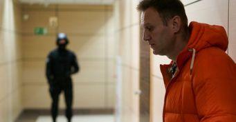 Спасти Россию отбелорусских событий: Новую причину отравления Навального рассказал эксперт