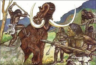 Специалисты выяснили, что ели неандертальцы при помощи древних фекалий