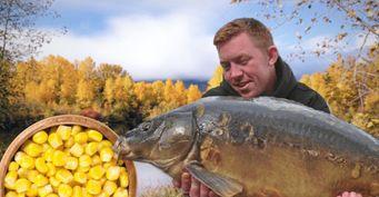 Карп скажет «ням-ням»: Насадка изкукурузы поосеннему рецепту для большой рыбы