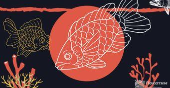 Рыбка, рыба ирыбина: Два забытых метода, как отсечь «мирную» мелочь