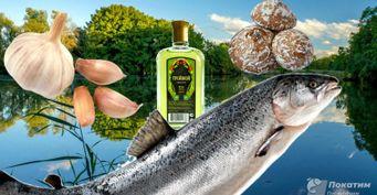 Три секрета рыбакам: Прикормка, аттрактант иароматизаторы своими руками