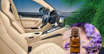 3 способа сделать эко-ароматизатор в машину своими руками с желатином и эфирными маслами