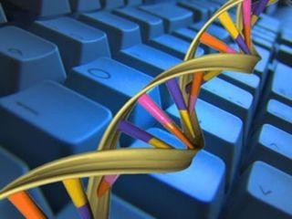 Ученые: создан первый в мире алгоритм для ДНК-компьютера