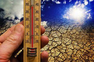 Ученые: к 2013 году изменение климата приведет к снижению урожайности