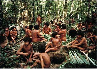 В Бразилии группа индейцев  вступила в первый контакт с цивилизацией