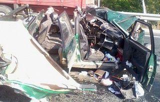 В ДТП в Саратовской области погибла женщина и 4 ее собаки