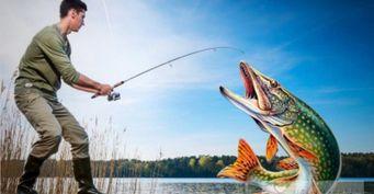 Безопасная рыбалка: 4 предмета защиты при ловле щуки