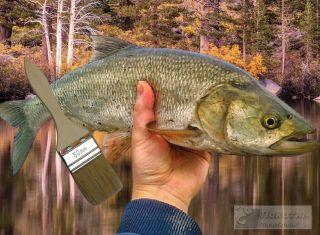 Уловистая самоделка поймает крупную рыбу. Изображение: Елена Лановая