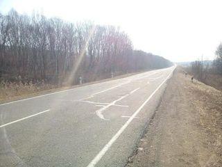Под Петербургом на дороге найден труп местного жителя