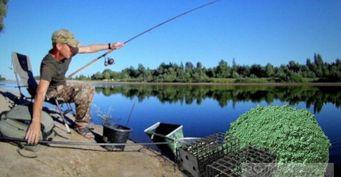 Рыбалка на фидер: Как выбрать уловистое место для кормового пятна на озере