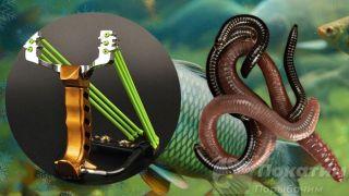 Специальная рогатка для рыбалки ичервь. Автор изображения «Покатим Ру» Нина Беляева.