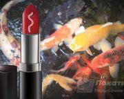 Женская помада поможет в ловле мирной рыбы