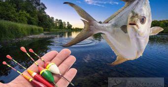 Рыбалка напоплавок: Тонкости ловли сдревней оснасткой