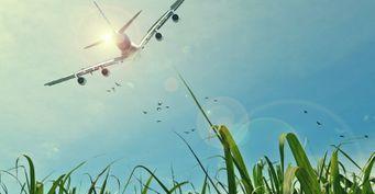 Аэрофлот не полетит в Грецию и Испанию этим летом