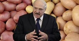 В России подешевеет картофель, если Белоруссия войдет в состав РФ