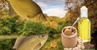 Откарася долеща: Базовая прикормка сарахисовой пастой ильняным маслом