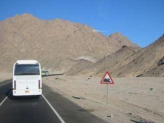 В Египте около 20 российских туристов пострадали в ДТП