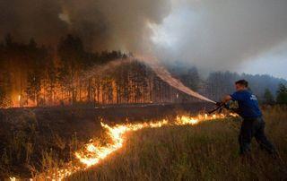 Из-за лесного пожара эвакуировали базу отдыха в окрестностях Геленджика