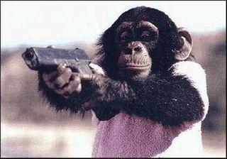 Учёные: шимпанзе являются прирождёнными убийцами