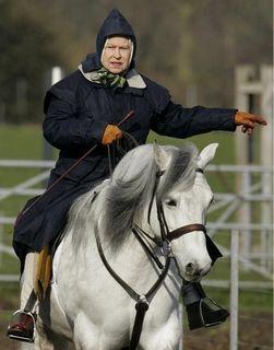 В корме лошади королевы Елизаветы II обнаружили морфий