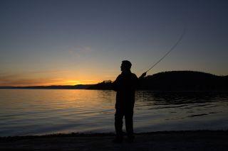 Ночная рыбалка // Изображение: открытый источник