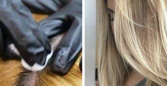 Корни станут чище: Три пилинга устранят лоснящиеся волосы