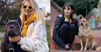 Лена Миро назвала детей Яны протухшими яйцеклетками: В отместку Рудковская пригрозила спустить собаку на блогера