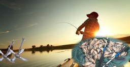 Рыбалка на лодке: хитрости, которые повысят улов