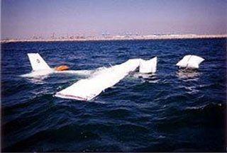 При жесткой посадке самолета пострадал депутат Липецкого облсовета