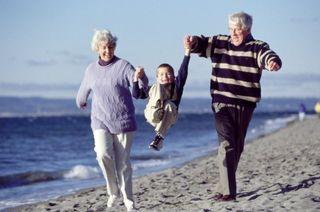 Шведские научные работники раскрыли секрет долголетия