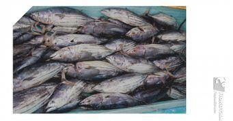 Прогноз клёва доконца сентября: Последний шанс «обворожить» рыбу