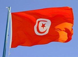 Полиция Туниса, из-за недостатка улик, отпустила мать убитой девочки из России