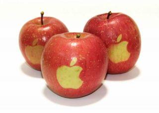 Apple разрабатывает двусторонний USB-разъем