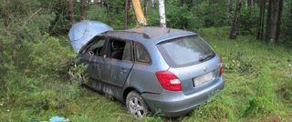 Машина врезалась в дерево в Ленобласти, пострадали трое детей